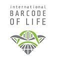 iBOL Logo